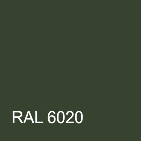 RAL 6020